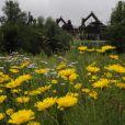 Le ''paradis'' selon Catherina Ruffing-Bernadotte, un microcosme sur le site de l'usine sidérurgique désaffectée de Völklingen (Sarre, Allemagne), site classé au Patrimoine culturel mondial de l'Unesco, qu'elle a aménagé et ouvert au public en 2009.