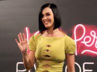 Katy Perry n'a pas froid aux yeux : elle ose un affriolant décolleté à Rio