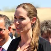 Angelina Jolie fait l'unanimité dans son combat quand Brad Pitt divise