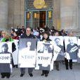Les manifestants lors du rassemblement Une vague blanche pour la Syrie devant le Panthéon à Paris le 15 mars 2013 pour dénoncer les massacres des civils syriens depuis le début du conflit le 15 mars 2011