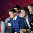 Le groupe One Direction a fait son entrée au musée de Madame Tussauds à Londres, le 18 avril 2013.
