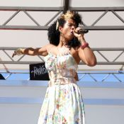 Kelis : Encore une chanteuse dans le collimateur du fisc américain