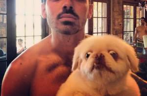Joe Jonas : Torse nu et ami des bêtes quand sa belle-soeur poste son échographie