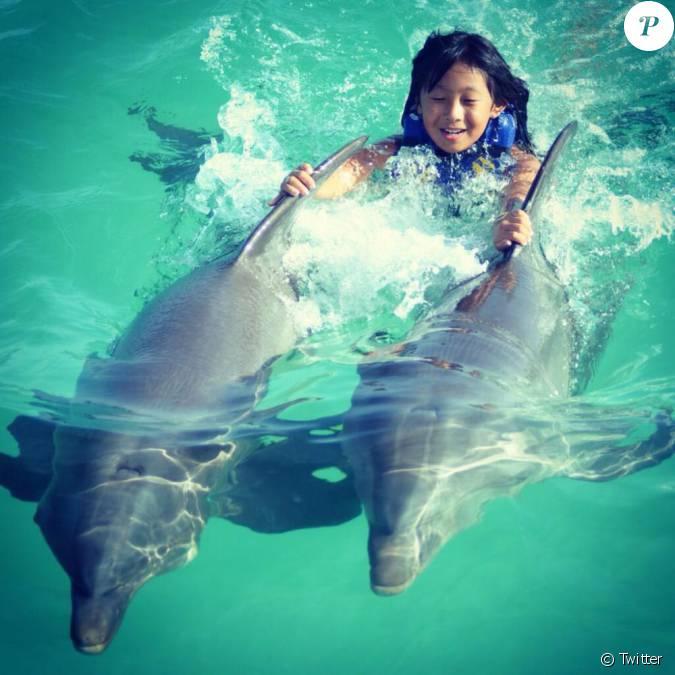 Jade r alise un r ve nager avec les dauphins le 16 ao t - Nager avec les dauphins en piscine ...