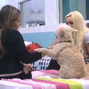 Secret Story 7 : Florine et Clara en tête à tête avec Shakespeare... le chien !