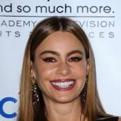 Sofia Vergara, Kaley Cuoco, Mariska Hargitay... : Riches stars de la télé US
