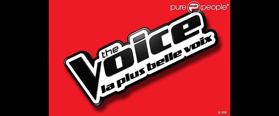The Voice revient sur TF1 en janvier 2014 pour une troisième saison.
