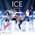 Les coachs de Ice Show (M6) : Sarah Abitbol, Gwendal Peizerat, Surya Bonaly et Philippe Candeloro