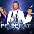 L'équipe de Gwendal Peizerat dans l'Ice  Show