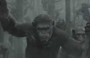 La Planète des singes - L'Affrontement : L'annonce d'une guerre sans merci