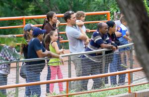 Matthew McConaughey : Papa au top avec sa belle Camila et leurs 3 enfants au zoo