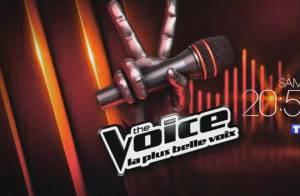 The Voice 3 : Cette voix étonnante fera-t-elle l'unanimité chez nos coachs ?
