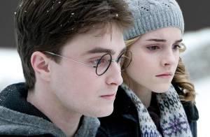 Pas de 'Harry Potter' sous le sapin de Noël cette année !