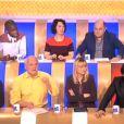 Les chroniqueurs de L'Emission pour tous (émission du 22 janvier 2014)
