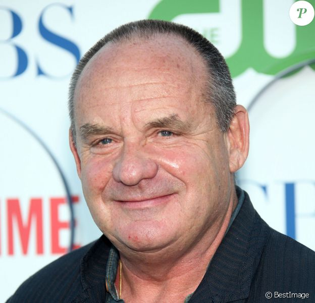 L'acteur des Experts, Paul Guilfoyle, en 2010.