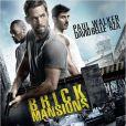 Affiche du film Brick Mansions