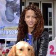 Noémie Lenoir lors d'une opération en faveur des l'association ''Les chiens guides d'aveugles'' à Nice, le 3 mai 2014.