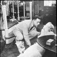 Marilyn Monroe au sol au cinéma... Dans la vraie vie, le Dr Ralph Greenson se serait penchée sur elle pour mettre fin à ses jours dans la nuit du 4 au 5 août 1962, selon la thèse de la conspiration soutenue par un nouvel ouvrage à paraître en juin 2014