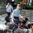 Daniel Radcliffe promènent des chiens sur le tournage de Trainwreck à Bryant Park, New York, le 30 juin 2014