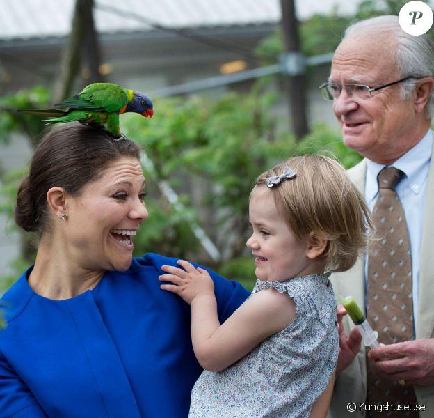 La princesse héritière Victoria, coiffée d'un perroquet, la princesse Estelle, très amusée, et le roi Carl XVI Gustaf de Suède sont allés ensemble à Skansen, le musée en plein air et zoo de Stockholm, le 11 juillet 2014. Trois générations de souverains réunis dans la bonne humeur.