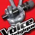 Les coachs de The Voice Belgique saison 2 sont maintenant connus