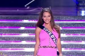 Miss France 2015 : Les 12 demi-finalistes, défilé en ''Panthère rose'' sexy !