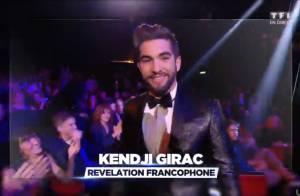 NRJ Music Awards 2014 : Sia et Kendji Girac font coup double, audience en baisse