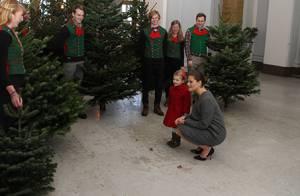 Princesse Estelle: Petite reine de Noël, elle reçoit le roi des forêts au palais