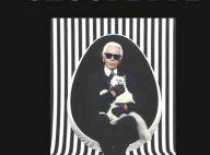 Karl Lagerfeld : Choupette, sa chatte qui gagnait 3 millions...