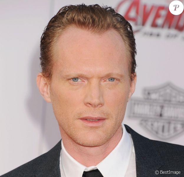 "Paul Bettany lors de la première de ""Avengers : L'ère d'Ultron"" (Marvel's 'Avengers: Age Of Ultron) à Los Angeles, le 13 avril 2015"