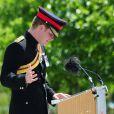 Le prince Harry inaugurait le 11 juin 2015 au National Arboretum Memorial dans le Staffordshire, en présence notamment du Premier ministre David Cameron, le Bastion Memorial, qui figure les noms des 453 soldats britanniques tués en Afghanistan au cours des treize années d'intervention britannique.S