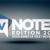 Cyril Hanouna, Alessandra Sublet, Karine Le Marchand : Favoris des TV Notes 2015