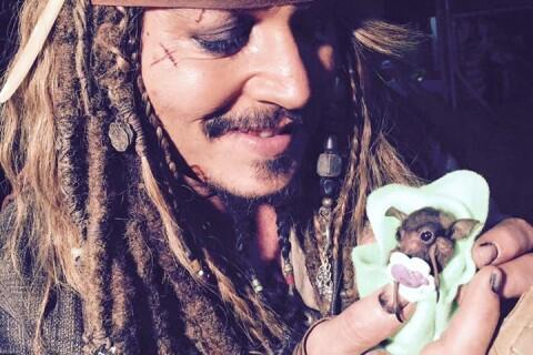 Johnny Depp donne le biberon à un bébé chauve-souris : Irrésistible !