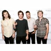 One Direction, la séparation : La mère de Niall confirme !