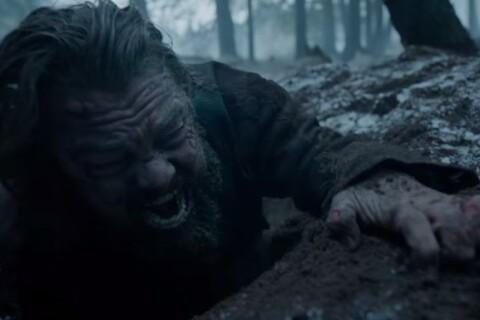 """Leonardo DiCaprio violé par un ours ? Drôle de buzz pour """"The Revenant"""""""