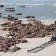 """Exclusif - Le réalisateur anglais Christopher Nolan sur le tournage du film """"Dunkirk"""" sur la plage de Malo-les-Bains, à Dunkerque le 27 mai 2016"""