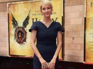 Harry Potter : Un film en discussion, Daniel Radcliffe de retour ?