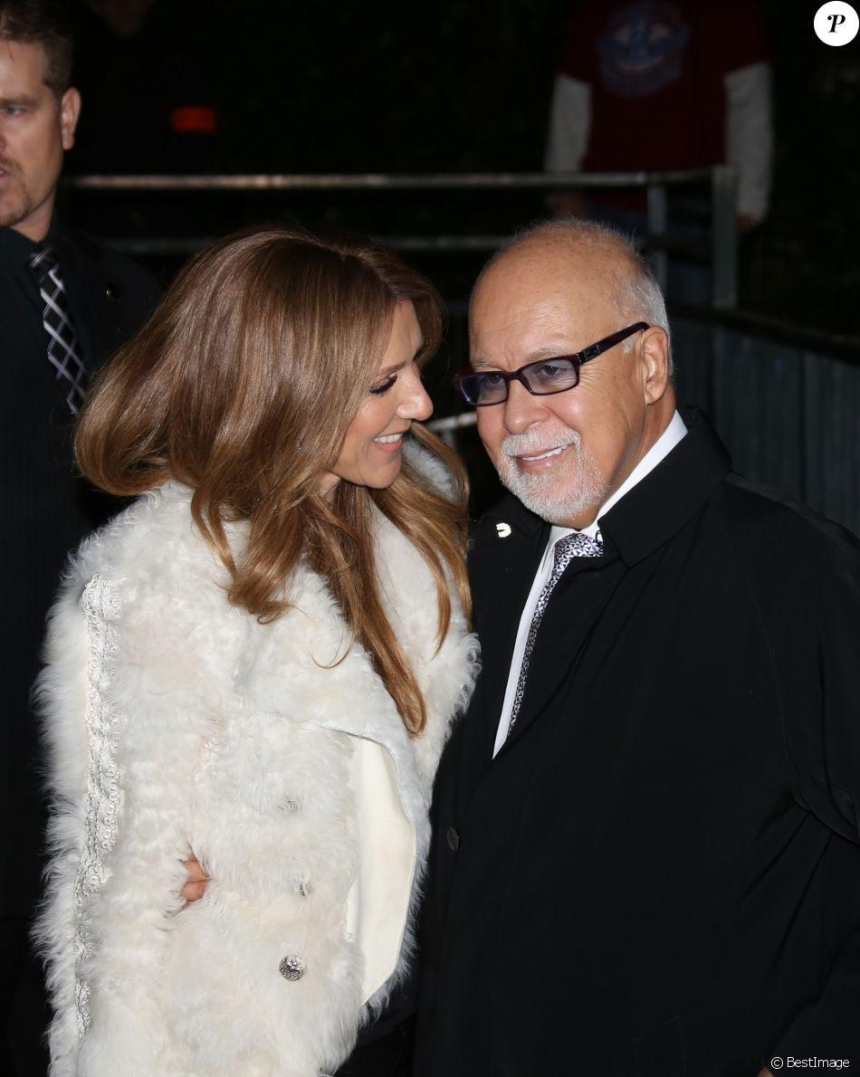 Céline Dion et son mari René Angelil à Paris le 13 novembre 2013.