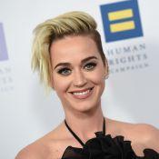"""Katy Perry et le célèbre I Kissed a Girl : """"Je suis allée bien plus loin que ça"""""""