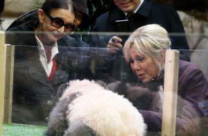 Brigitte Macron émue : Radieuse devant un bébé panda aussi mignon que farouche