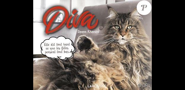 Le livre Diva de Reem Kherici (éditions Larousse)