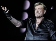 Héritage de Johnny Hallyday : Audience reportée, Laura et David entendus