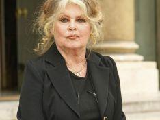 """Brigitte Bardot : """"Je ne suis pas une bonne grand-mère"""" !"""
