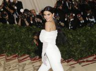 Kendall Jenner pousse un homme qui la gêne sur le tapis rouge