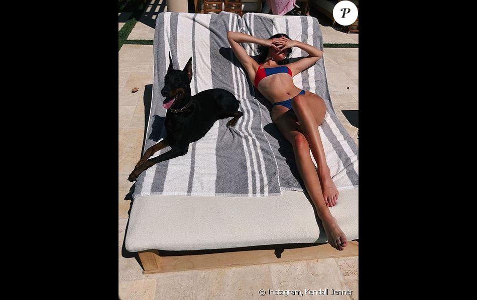 Kendall Jenner et sa chienne Pinscher, un dobermann.