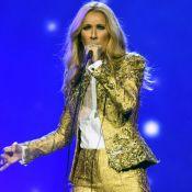 Céline Dion : Sexy en jupe et bas résille troué, la star s'improvise couturière