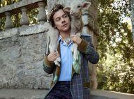 Harry Styles : Craquante égérie Gucci avec d'adorables animaux