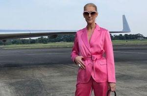 Céline Dion menottée par les forces de l'ordre ? La star surprend ses fans