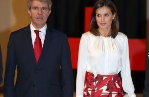 Letizia d'Espagne : Carreaux et couleurs, looks d'une semaine d'anniversaires