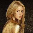 Shakira contrainte de repousser sa tournée mondiale El Dorado World Tour une nouvelle fois. Elle fera son retour en juin 2018.